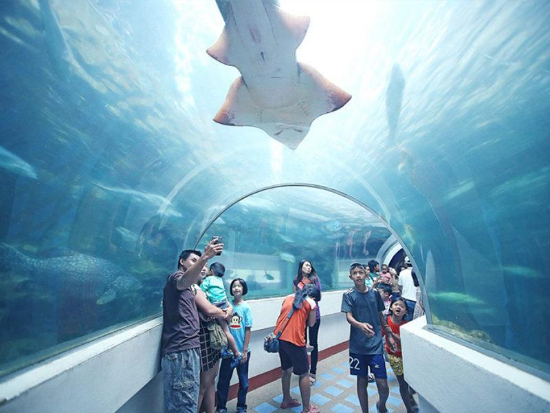 Chaolao Cabana Resort Chaloem Prakiet H.M.The King's 72th Anniversary Aquarium